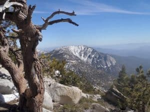 San Jacinto Wilderness