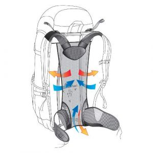deuter aircomfort