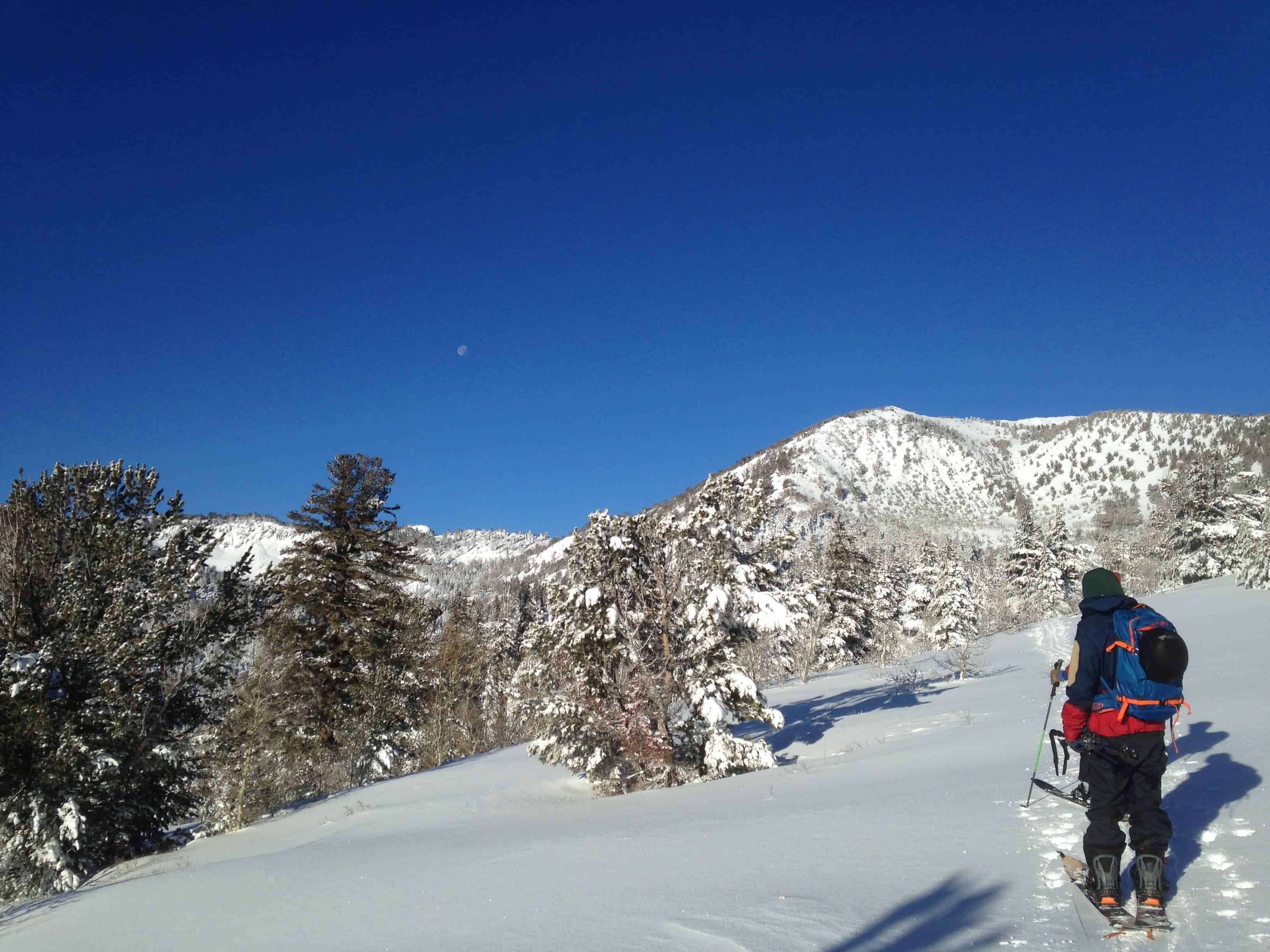Tahoe Mountain Sports was founded in by David Polivy, Rick Papaleo and Jeremiah Skirvin in Truckee, California. An ecommerce operation from the start, TMS operated solely online for its first three years, sprouting a loyal clientele from the trio's trademark customer /5(48).