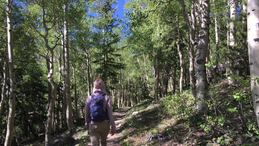 The author Coral, hiking among aspens in Great Basin National Park.
