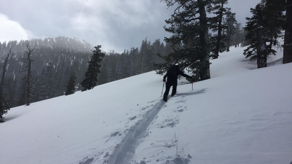 Backcountry skier hiking through snow