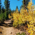 Experience Truckee in the fall.